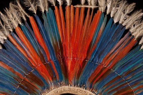 Indian Headdress detail